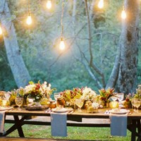 One reason outdoor parties are great is that very little is needed in the way of decoration.