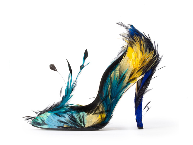 Birds Of Paradise Most Inspiring Feathers In Design World Love Happens Magazine