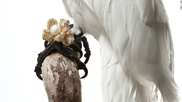 Luxury Guilty Pleasures we Covet* Anabela Chan's Bird inspired Jewelry