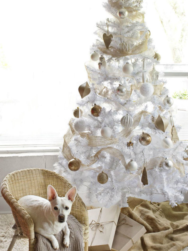 White and gold is a modern yet timeless color scheme that looks especially stunning in the winter. This white tree keeps it minimal yet elegant with gleaming gold ornaments and the subtle gilt of the ribbon.