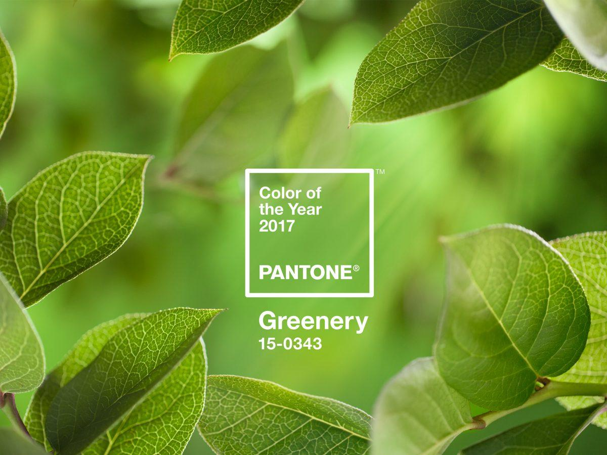 PANTONE-Color-of-the-Year-2017-Greenery-15-0343-leaves