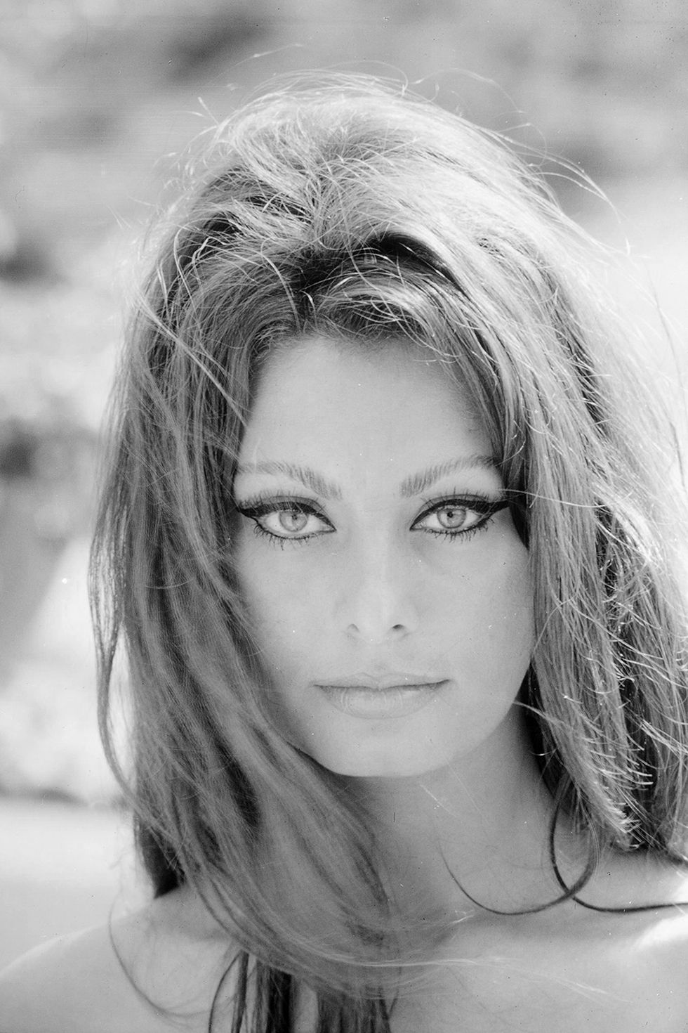 Sophia Loren, The Woma...