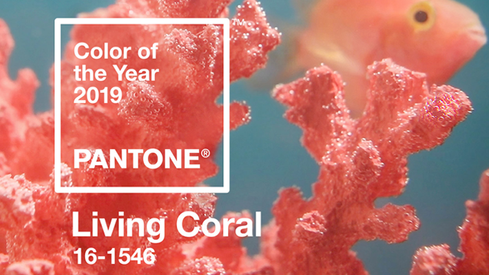 Pantone Color of the Year 2019 Living Coral 16-1546