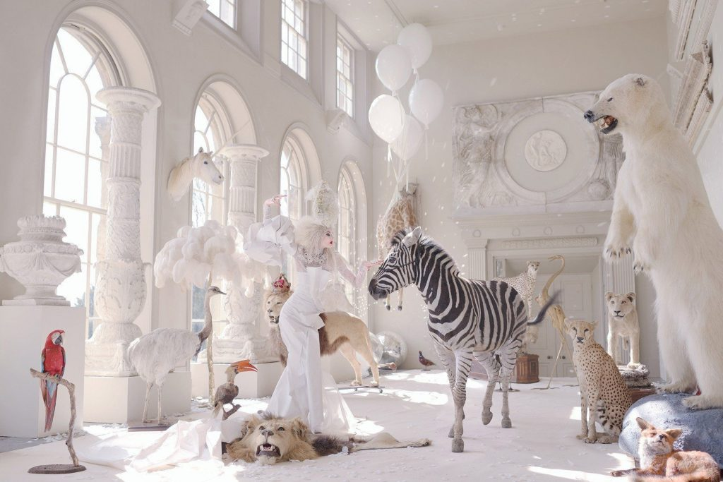 Photo titled White Witch Awakening by Miss Aniela showing taxidermy animals and a women in white