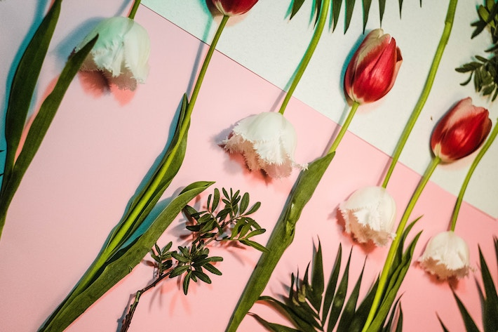 Tips When Decorating Your Home With Flowers