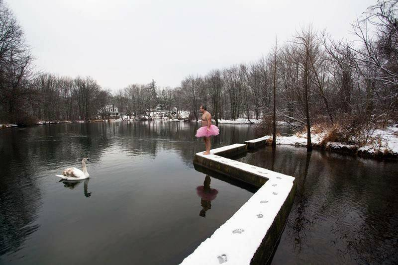 Swan. Saddle River, New Jersey - the tutu project