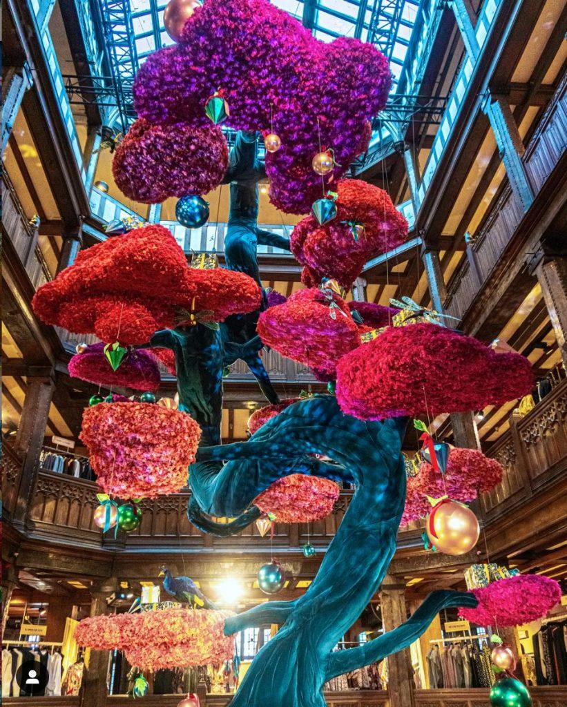 Bonsai Tree in Liberty London department store