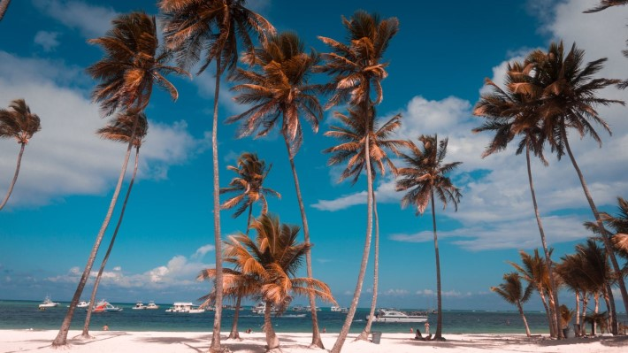 How to Vacation like a celebrity in Punta Cana