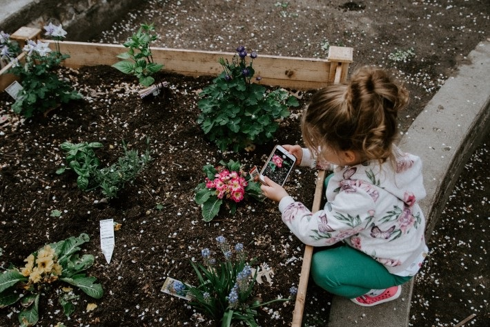 Things to do with Kids: gardening