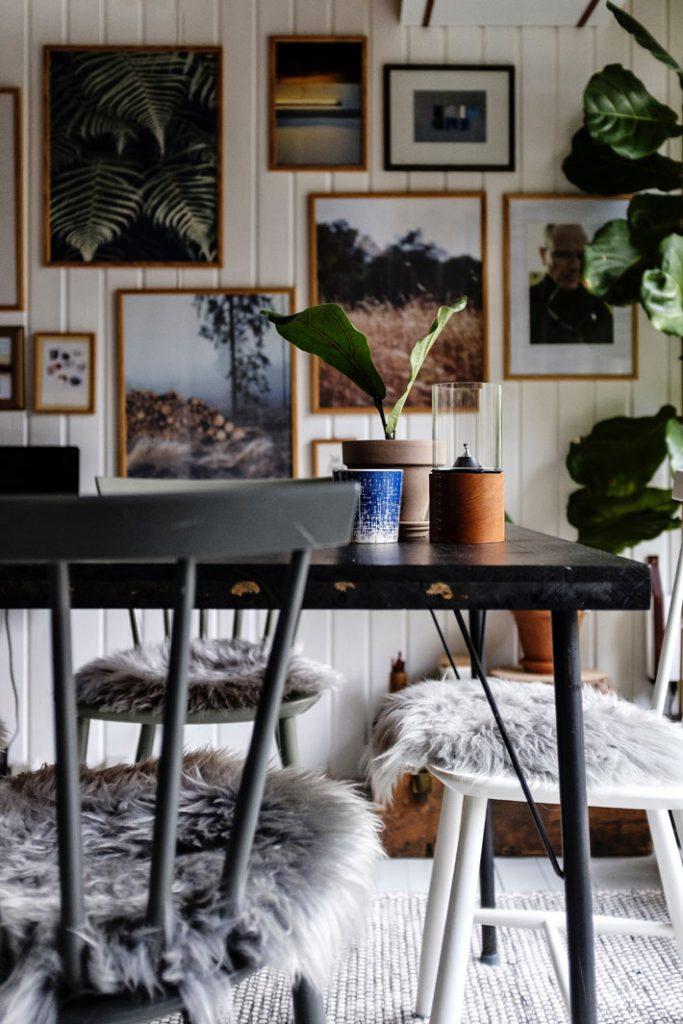 lasse moller unsplash indoor plants - european home styles