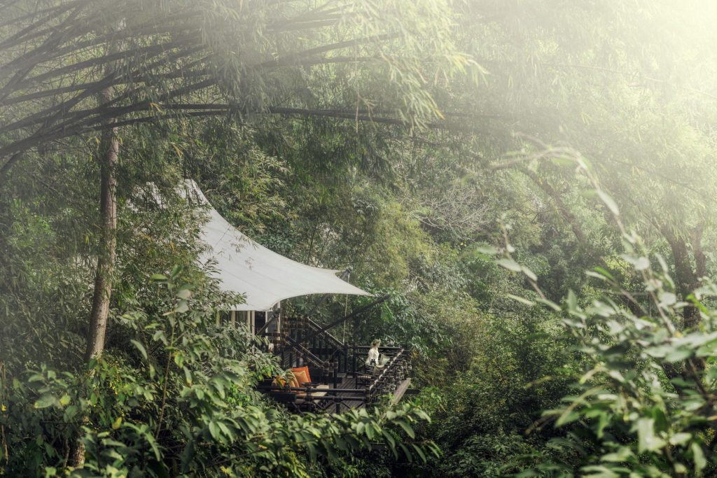 Superior Tent at Four Seasons Golden Triangle, Thailand