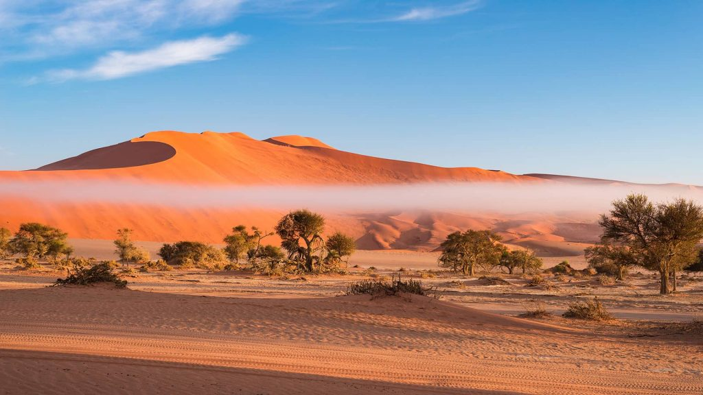 sand dunes of the Namib desert in Nambia, ROAR AFRICA - dream vacations