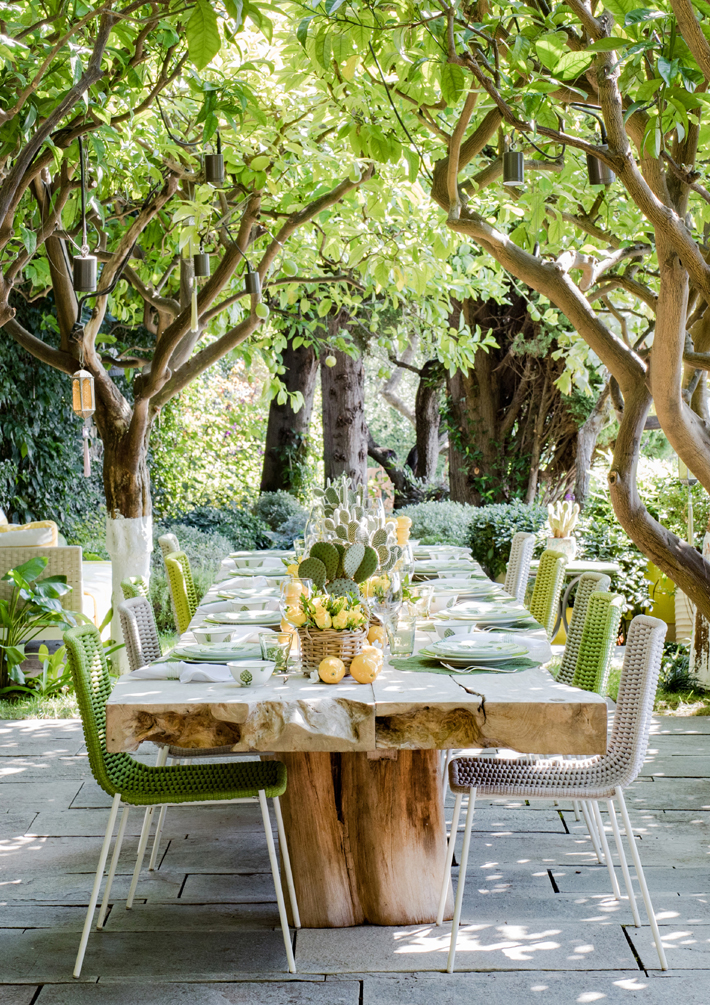 alfresco dining table lemons nature rustic