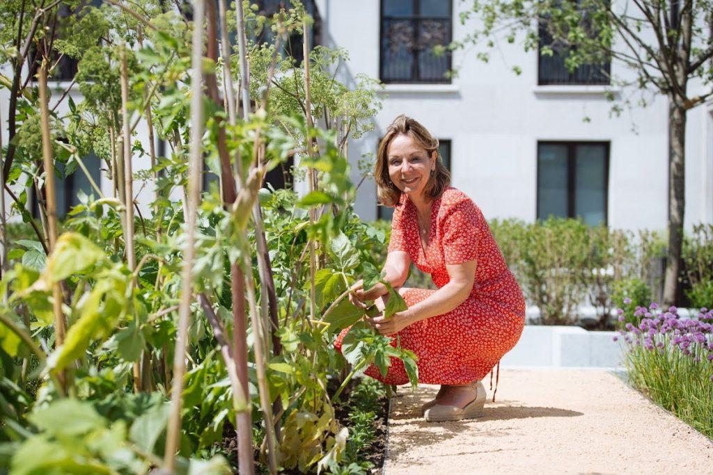 home garden pro tips from jo thompson leading landscape and garden designer