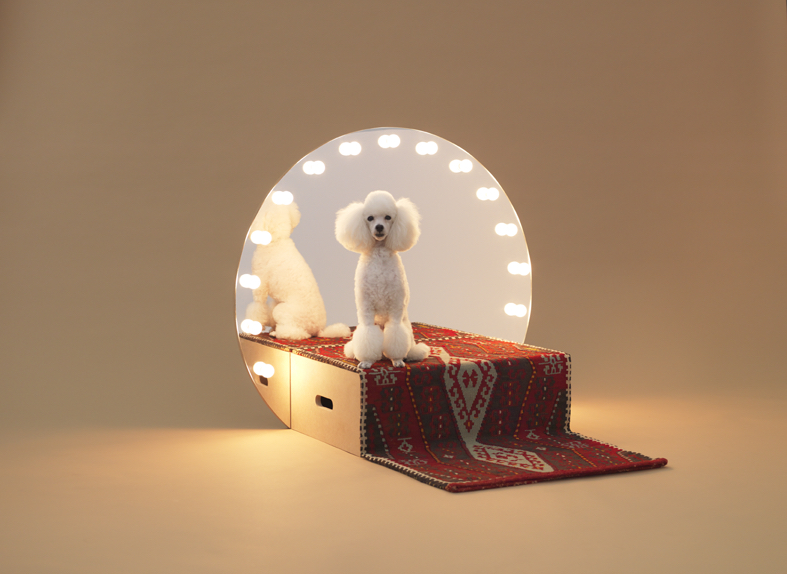 Architecture for Dogs exhibition at Japan House London Design Festival 2020