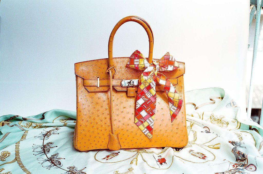 Hermès Ostrich Birkin Bag (Photo via Wen-Cheng Liu | Wikimedia)