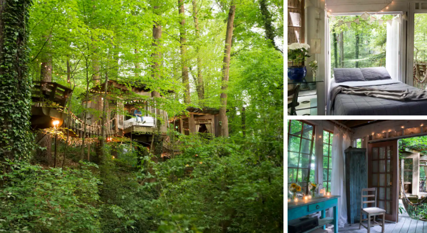 unique travel destinations Secluded Intown Treehouse (Photos from Airbnb)