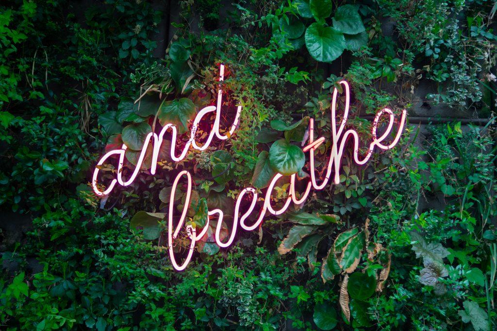And Breathe photo, meditation, calm Photo by Max van den Oetelaar