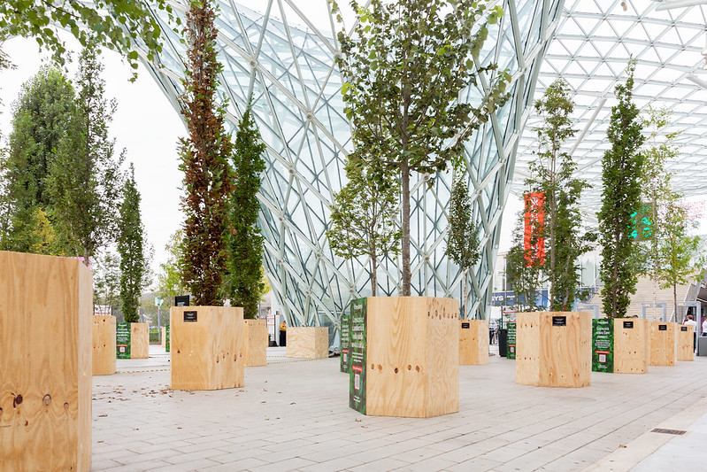 forestami trees Photo by Diego Ravier / Courtesy of Salone del Mobile.Milano