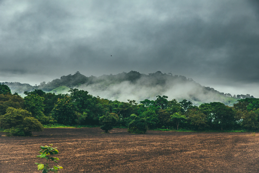 most beautiful best road trips in the world Cambutal, Panama (Photo by Austin Neill)